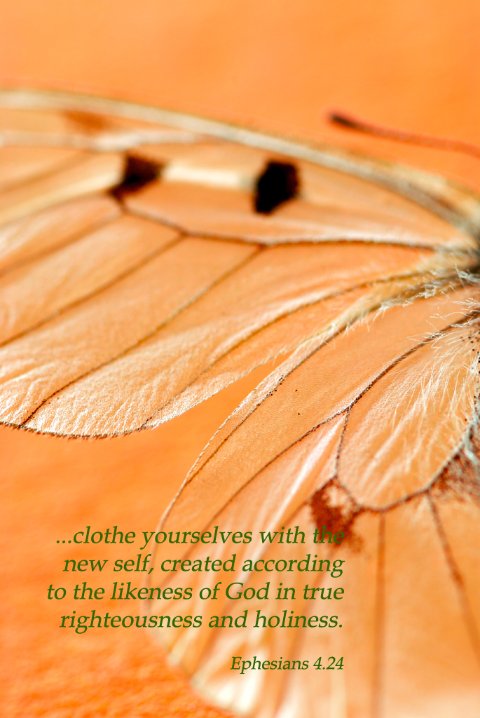 Ephesians 4.24 Poster - ...clothe yourselves with the new self ...