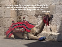 ...it is easier for a camel to go through the eye of a needle than for someone who is rich to enter the kingdom of God. --Luke 18.25