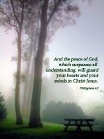 And the peace of God, which surpasses all understanding, will guard your hearts and your minds in Christ Jesus. --Philippians 4.7