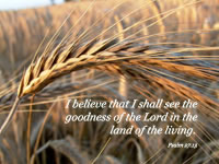 I believe that I shall see the bounty of the LORD in the land of the living.